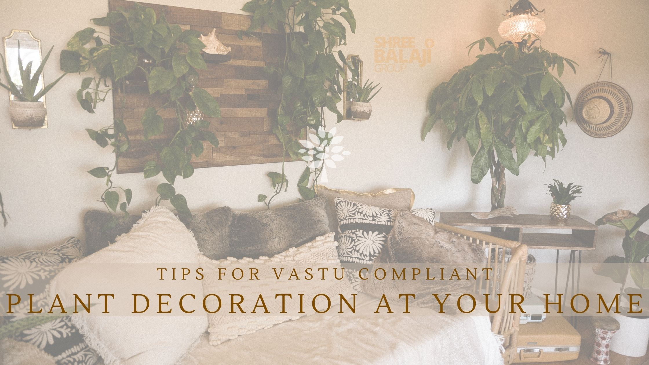Tips for Vastu Compliant Plant Decoration at Your Home