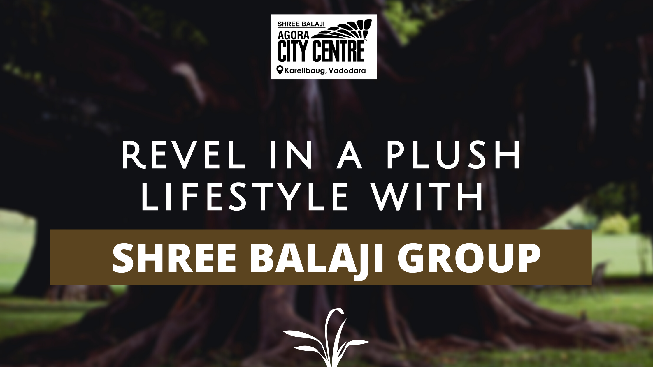 REVEL IN A PLUSH LIFESTYLE WITH SHREE BALAJI GROUP